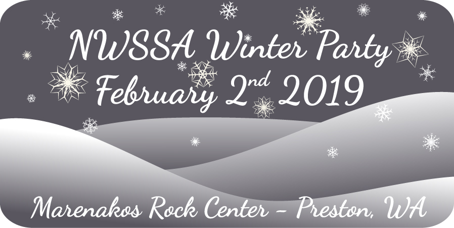 2019 NWSSA Winter Party